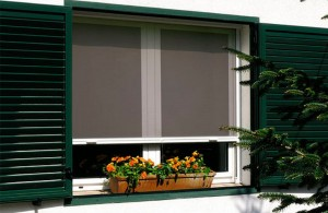 Mosquitera-enrrollable-en-ventana-web